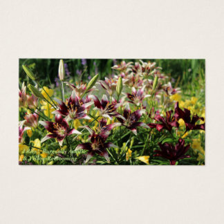 Lilies!  Burgundy Asiatic & Yellow Reblooming Business Card