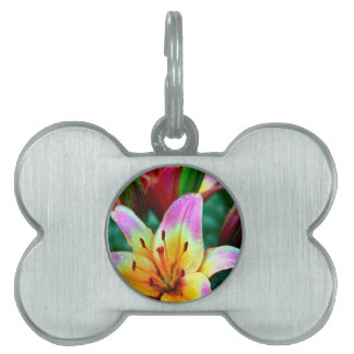 Lilies in Rain Pet Tags