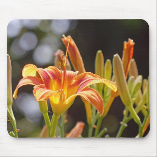 Lilies in the Sunshine Mouse Pad