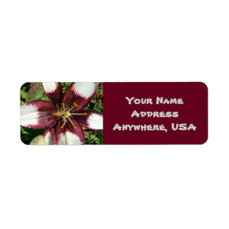 Lilly Address Labels