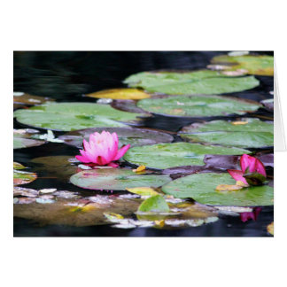 Lilly pad card