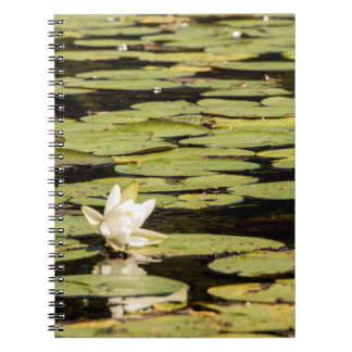 Lilly Pad Notebook