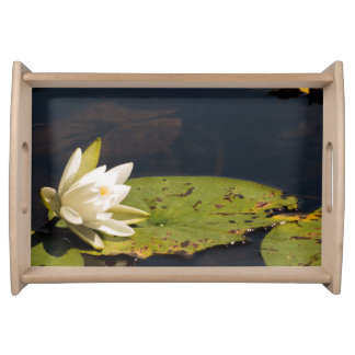 Lilly Pad Service Trays