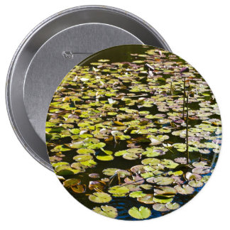 Lilly pads pins