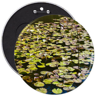 Lilly pads pinback button