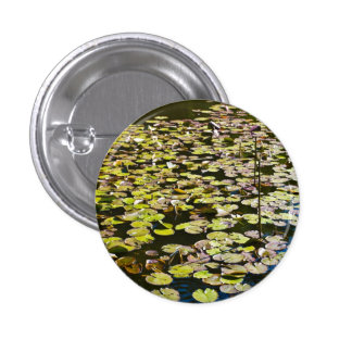 Lilly pads button