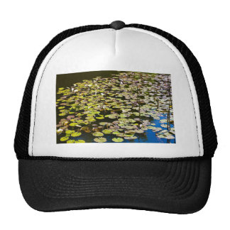 Lilly pads trucker hat