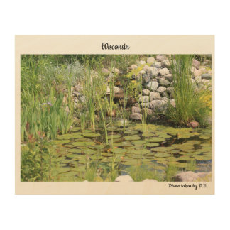 Lilly Pads in summer Wood Wall Decor