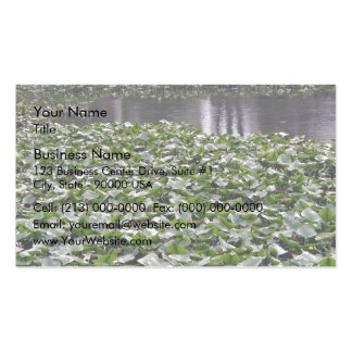 Lilly pads on a pond business card templates