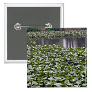 Lilly pads on a pond pin
