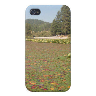 Lilly Pads Rose Lake Idaho iPhone 4 Cases