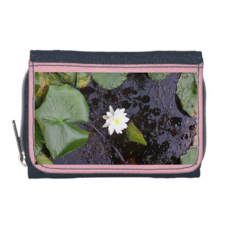 lilly pond wallet