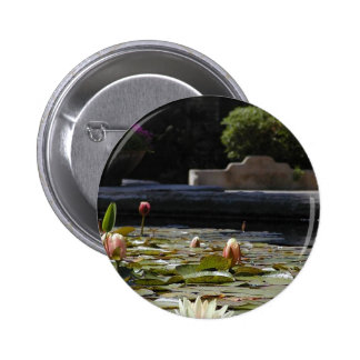 Lillypads Waterlily Buttons