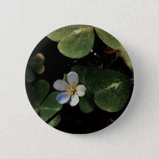 Lily button