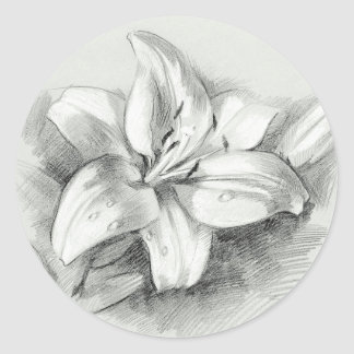 Lily Drawing Round Sticker