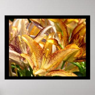 Lily Floral art prints Orange Lilies Nature print