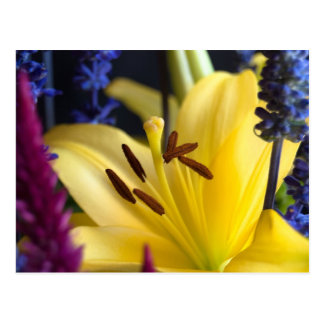 Lily Flower Arrangement Postcard