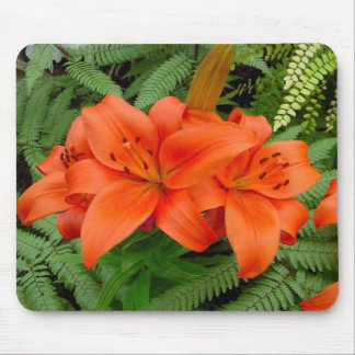 Lily flower - Iridescent orange (Matt 28-30) Mouse Pad