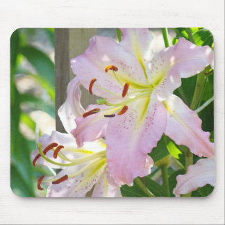 Lily Flowers Floral Garden mouse pad Nature