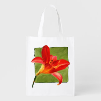 Lily Foldable Grocery Bag