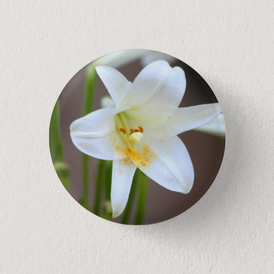 Lily in Bloom pin