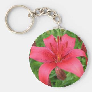 Lily, In Fushia Basic Round Button Key Ring