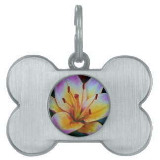 Lily in Rain Pet Tag