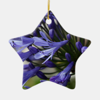 Lily of the Nile  (Agapanthus sp.) Ceramic Ornament