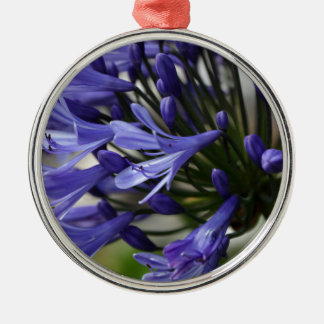 Lily of the Nile  (Agapanthus sp.) Metal Ornament