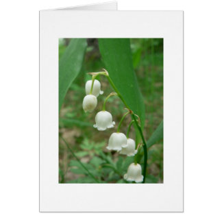 Lily of the valley Blank Greeting Card