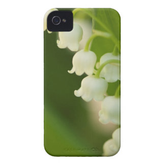 Lily of the Valley Flower iPhone 4 Case