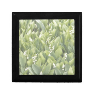 Lily of the Valley Flower Patch in Fog Gift Box