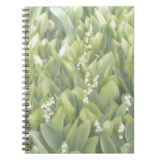 Lily of the Valley Flower Patch in Fog Notebook