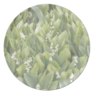 Lily of the Valley Flower Patch in Fog Plate