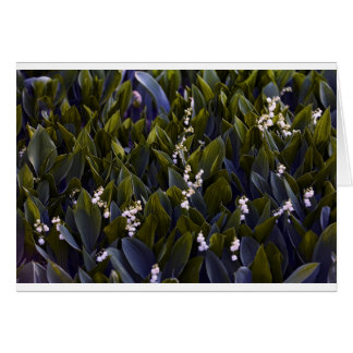 Lily of the Valley Flower Patch with Blue Tint Card