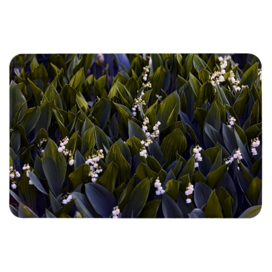 Lily of the Valley Flower Patch with Blue Tint Rectangular Photo Magnet