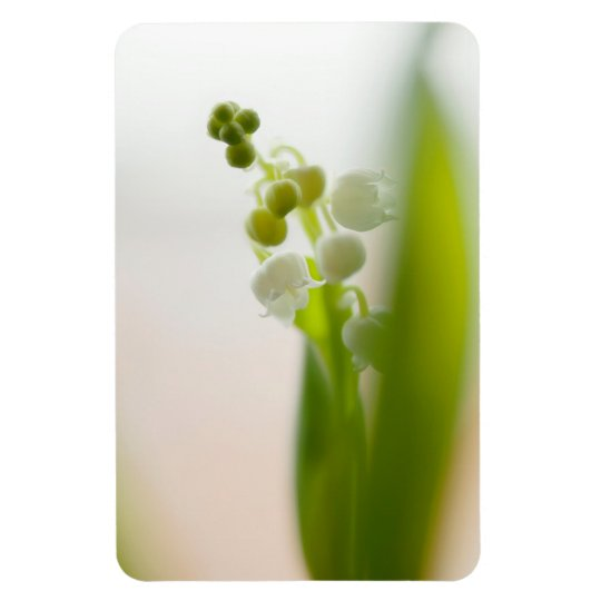 Lily of the Valley Flower Rectangular Photo Magnet