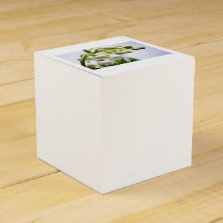 Lily of the Valley Flowers Favour Boxes