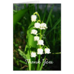 Lily Of The Valley Flowers Greeting Card