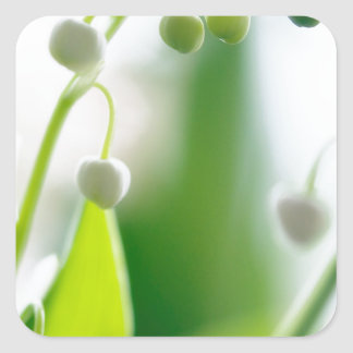 Lily of the Valley Flowers Square Sticker