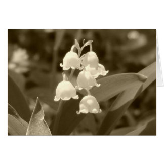 Lily of the Valley in Sepia Card