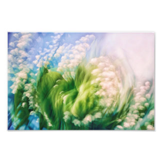 Lily of the Valley Swirl Photographic Print