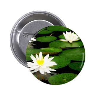 Lily Pad Button