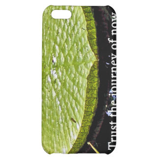 Lily Pad iPhone 5C Cases