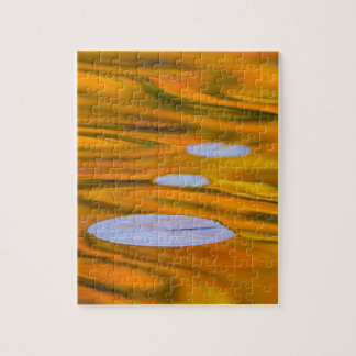 Lily pad on orange water, Canada Jigsaw Puzzle
