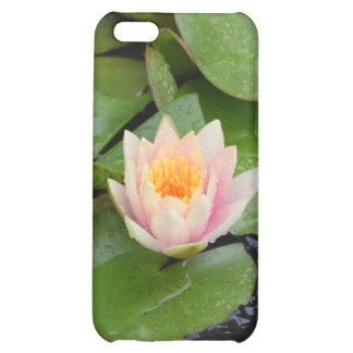 Lily Pads and Pink Flower Speck iPhone Case Case For iPhone 5C
