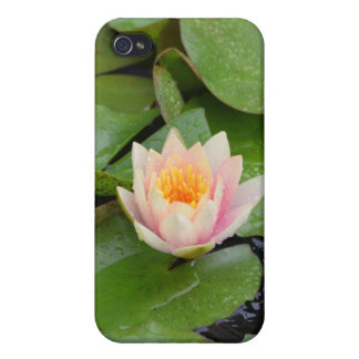 Lily Pads and Pink Flower Speck iPhone Case Cases For iPhone 4