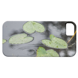 Lily Pads iPhone 5 Covers