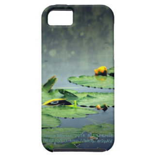 lily pads in the rain at Vernonia Lake iPhone 5 Covers