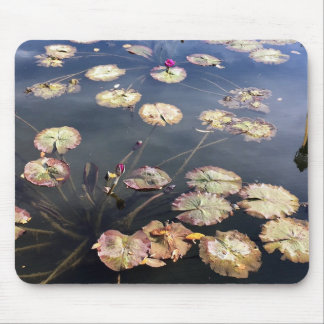 lily pads mouse pad
